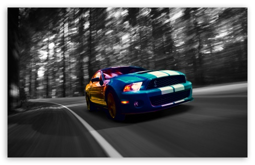 Ford Shelby GT500 ❤ 4K UHD Wallpaper for Wide 16:10 5:3 Widescreen WHXGA WQXGA WUXGA WXGA WGA ; 4K UHD 16:9 Ultra High Definition 2160p 1440p 1080p 900p 720p ; UHD 16:9 2160p 1440p 1080p 900p 720p ; Standard 4:3 5:4 3:2 Fullscreen UXGA XGA SVGA QSXGA SXGA DVGA HVGA HQVGA ( Apple PowerBook G4 iPhone 4 3G 3GS iPod Touch ) ; Tablet 1:1 ; iPad 1/2/Mini ; Mobile 4:3 5:3 3:2 16:9 5:4 - UXGA XGA SVGA WGA DVGA HVGA HQVGA ( Apple PowerBook G4 iPhone 4 3G 3GS iPod Touch ) 2160p 1440p 1080p 900p 720p QSXGA SXGA ;