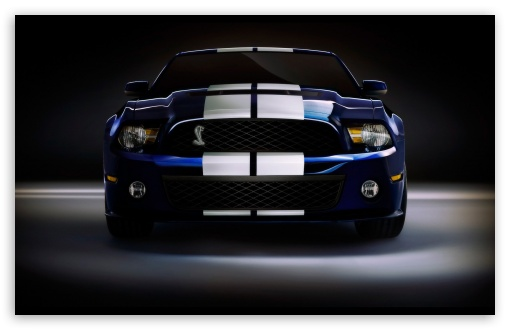 Ford Shelby GT500 ❤ 4K UHD Wallpaper for Wide 16:10 5:3 Widescreen WHXGA WQXGA WUXGA WXGA WGA ; 4K UHD 16:9 Ultra High Definition 2160p 1440p 1080p 900p 720p ; Standard 4:3 5:4 3:2 Fullscreen UXGA XGA SVGA QSXGA SXGA DVGA HVGA HQVGA ( Apple PowerBook G4 iPhone 4 3G 3GS iPod Touch ) ; Tablet 1:1 ; iPad 1/2/Mini ; Mobile 4:3 5:3 3:2 16:9 5:4 - UXGA XGA SVGA WGA DVGA HVGA HQVGA ( Apple PowerBook G4 iPhone 4 3G 3GS iPod Touch ) 2160p 1440p 1080p 900p 720p QSXGA SXGA ;