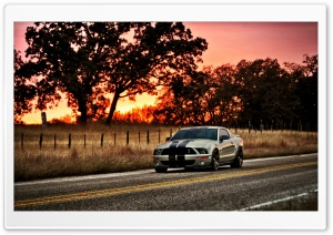 Ford Shelby HDR HD Wide Wallpaper for Widescreen