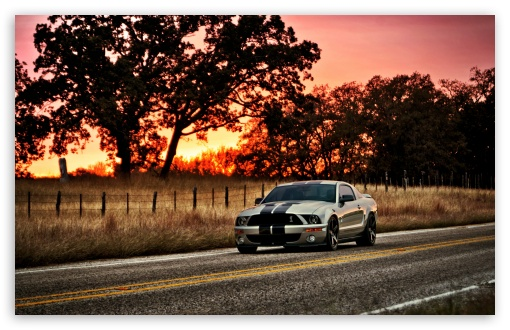 Ford Shelby HDR HD wallpaper for Wide 16:10 5:3 Widescreen WHXGA WQXGA WUXGA WXGA WGA ; HD 16:9 High Definition WQHD QWXGA 1080p 900p 720p QHD nHD ; Standard 4:3 5:4 3:2 Fullscreen UXGA XGA SVGA QSXGA SXGA DVGA HVGA HQVGA devices ( Apple PowerBook G4 iPhone 4 3G 3GS iPod Touch ) ; Tablet 1:1 ; iPad 1/2/Mini ; Mobile 4:3 5:3 3:2 16:9 5:4 - UXGA XGA SVGA WGA DVGA HVGA HQVGA devices ( Apple PowerBook G4 iPhone 4 3G 3GS iPod Touch ) WQHD QWXGA 1080p 900p 720p QHD nHD QSXGA SXGA ;