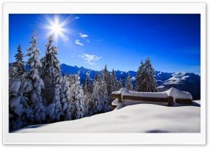 Forest Bench Winter Sun Ultra HD Wallpaper for 4K UHD Widescreen desktop, tablet & smartphone