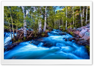 Forest Birch Stream, Long Exposure HD Wide Wallpaper for 4K UHD Widescreen desktop & smartphone