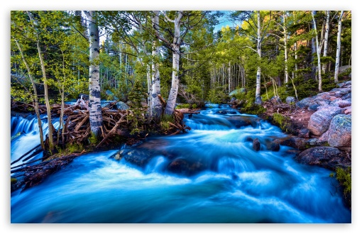Forest Birch Stream, Long Exposure HD wallpaper for Wide 16:10 5:3 Widescreen WHXGA WQXGA WUXGA WXGA WGA ; HD 16:9 High Definition WQHD QWXGA 1080p 900p 720p QHD nHD ; Standard 4:3 5:4 3:2 Fullscreen UXGA XGA SVGA QSXGA SXGA DVGA HVGA HQVGA devices ( Apple PowerBook G4 iPhone 4 3G 3GS iPod Touch ) ; Tablet 1:1 ; iPad 1/2/Mini ; Mobile 4:3 5:3 3:2 16:9 5:4 - UXGA XGA SVGA WGA DVGA HVGA HQVGA devices ( Apple PowerBook G4 iPhone 4 3G 3GS iPod Touch ) WQHD QWXGA 1080p 900p 720p QHD nHD QSXGA SXGA ; Dual 5:4 QSXGA SXGA ;