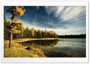 Forest By The Lake, Autumn HD Wide Wallpaper for 4K UHD Widescreen desktop & smartphone