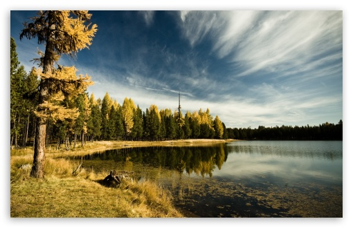 Forest By The Lake, Autumn HD wallpaper for Wide 16:10 5:3 Widescreen WHXGA WQXGA WUXGA WXGA WGA ; HD 16:9 High Definition WQHD QWXGA 1080p 900p 720p QHD nHD ; Standard 4:3 5:4 3:2 Fullscreen UXGA XGA SVGA QSXGA SXGA DVGA HVGA HQVGA devices ( Apple PowerBook G4 iPhone 4 3G 3GS iPod Touch ) ; Tablet 1:1 ; iPad 1/2/Mini ; Mobile 4:3 5:3 3:2 16:9 5:4 - UXGA XGA SVGA WGA DVGA HVGA HQVGA devices ( Apple PowerBook G4 iPhone 4 3G 3GS iPod Touch ) WQHD QWXGA 1080p 900p 720p QHD nHD QSXGA SXGA ; Dual 16:10 5:3 5:4 WHXGA WQXGA WUXGA WXGA WGA QSXGA SXGA ;