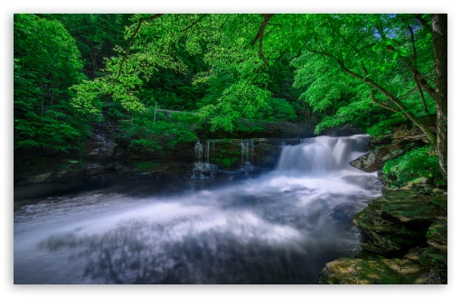 Forest Creek UltraHD Wallpaper for Wide 16:10 5:3 Widescreen WHXGA WQXGA WUXGA WXGA WGA ; UltraWide 21:9 24:10 ; 8K UHD TV 16:9 Ultra High Definition 2160p 1440p 1080p 900p 720p ; UHD 16:9 2160p 1440p 1080p 900p 720p ; Standard 4:3 5:4 3:2 Fullscreen UXGA XGA SVGA QSXGA SXGA DVGA HVGA HQVGA ( Apple PowerBook G4 iPhone 4 3G 3GS iPod Touch ) ; Smartphone 16:9 3:2 5:3 2160p 1440p 1080p 900p 720p DVGA HVGA HQVGA ( Apple PowerBook G4 iPhone 4 3G 3GS iPod Touch ) WGA ; Tablet 1:1 ; iPad 1/2/Mini ; Mobile 4:3 5:3 3:2 16:9 5:4 - UXGA XGA SVGA WGA DVGA HVGA HQVGA ( Apple PowerBook G4 iPhone 4 3G 3GS iPod Touch ) 2160p 1440p 1080p 900p 720p QSXGA SXGA ; Dual 16:10 5:3 16:9 4:3 5:4 3:2 WHXGA WQXGA WUXGA WXGA WGA 2160p 1440p 1080p 900p 720p UXGA XGA SVGA QSXGA SXGA DVGA HVGA HQVGA ( Apple PowerBook G4 iPhone 4 3G 3GS iPod Touch ) ;