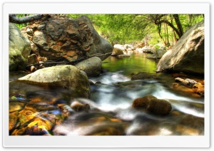 Forest Creek HDR HD Wide Wallpaper for Widescreen