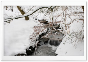 Forest Creek, Winter HD Wide Wallpaper for Widescreen