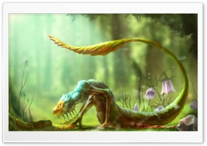 Forest Critters HD Wide Wallpaper for Widescreen
