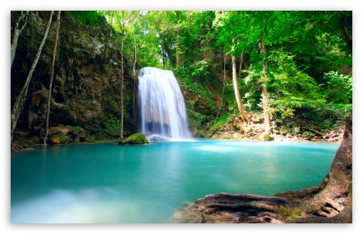 Forest Falls - Summer HD wallpaper for Standard 4:3 5:4 Fullscreen UXGA XGA SVGA QSXGA SXGA ; Wide 16:10 5:3 Widescreen WHXGA WQXGA WUXGA WXGA WGA ; HD 16:9 High Definition WQHD QWXGA 1080p 900p 720p QHD nHD ; Other 3:2 DVGA HVGA HQVGA devices ( Apple PowerBook G4 iPhone 4 3G 3GS iPod Touch ) ; Mobile VGA WVGA iPhone iPad PSP Phone - VGA QVGA Smartphone ( PocketPC GPS iPod Zune BlackBerry HTC Samsung LG Nokia Eten Asus ) WVGA WQVGA Smartphone ( HTC Samsung Sony Ericsson LG Vertu MIO ) HVGA Smartphone ( Apple iPhone iPod BlackBerry HTC Samsung Nokia ) Sony PSP Zune HD Zen ; Tablet 2 Android ;