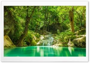 Forest Lake Ultra HD Wallpaper for 4K UHD Widescreen desktop, tablet & smartphone