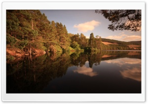 Forest Lake, Late Summer HD Wide Wallpaper for Widescreen