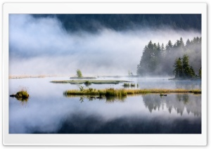 Forest Lake, Nature, Mist HD Wide Wallpaper for 4K UHD Widescreen desktop & smartphone