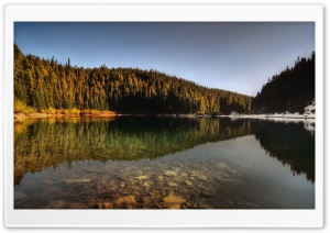 Forest Lake Reflection HD Wide Wallpaper for Widescreen