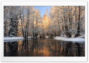 Forest Lake, Winter HD Wide Wallpaper for Widescreen