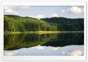 Forest Reflection HD Wide Wallpaper for 4K UHD Widescreen desktop & smartphone