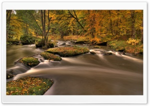 Forest River, Long Exposure HD Wide Wallpaper for Widescreen