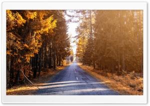 Forest Road, Autumn Landscape Ultra HD Wallpaper for 4K UHD Widescreen desktop, tablet & smartphone