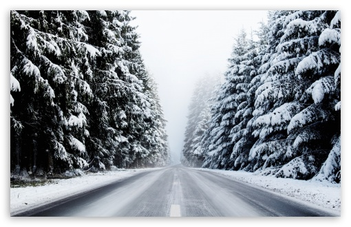 Forest Road in Winter UltraHD Wallpaper for Wide 16:10 5:3 Widescreen WHXGA WQXGA WUXGA WXGA WGA ; UltraWide 21:9 24:10 ; 8K UHD TV 16:9 Ultra High Definition 2160p 1440p 1080p 900p 720p ; UHD 16:9 2160p 1440p 1080p 900p 720p ; Standard 4:3 5:4 3:2 Fullscreen UXGA XGA SVGA QSXGA SXGA DVGA HVGA HQVGA ( Apple PowerBook G4 iPhone 4 3G 3GS iPod Touch ) ; Smartphone 16:9 3:2 5:3 2160p 1440p 1080p 900p 720p DVGA HVGA HQVGA ( Apple PowerBook G4 iPhone 4 3G 3GS iPod Touch ) WGA ; Tablet 1:1 ; iPad 1/2/Mini ; Mobile 4:3 5:3 3:2 16:9 5:4 - UXGA XGA SVGA WGA DVGA HVGA HQVGA ( Apple PowerBook G4 iPhone 4 3G 3GS iPod Touch ) 2160p 1440p 1080p 900p 720p QSXGA SXGA ;