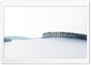 Forest Skyline Winter HD Wide Wallpaper for Widescreen