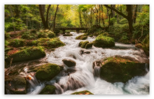 Forest Stream HD wallpaper for Wide 16:10 5:3 Widescreen WHXGA WQXGA WUXGA WXGA WGA ; HD 16:9 High Definition WQHD QWXGA 1080p 900p 720p QHD nHD ; UHD 16:9 WQHD QWXGA 1080p 900p 720p QHD nHD ; Standard 4:3 5:4 3:2 Fullscreen UXGA XGA SVGA QSXGA SXGA DVGA HVGA HQVGA devices ( Apple PowerBook G4 iPhone 4 3G 3GS iPod Touch ) ; Smartphone 5:3 WGA ; Tablet 1:1 ; iPad 1/2/Mini ; Mobile 4:3 5:3 3:2 16:9 5:4 - UXGA XGA SVGA WGA DVGA HVGA HQVGA devices ( Apple PowerBook G4 iPhone 4 3G 3GS iPod Touch ) WQHD QWXGA 1080p 900p 720p QHD nHD QSXGA SXGA ; Dual 16:10 5:3 16:9 4:3 5:4 WHXGA WQXGA WUXGA WXGA WGA WQHD QWXGA 1080p 900p 720p QHD nHD UXGA XGA SVGA QSXGA SXGA ;
