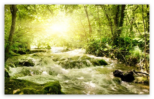 Forest Stream HD wallpaper for Wide 16:10 5:3 Widescreen WHXGA WQXGA WUXGA WXGA WGA ; HD 16:9 High Definition WQHD QWXGA 1080p 900p 720p QHD nHD ; Standard 4:3 5:4 3:2 Fullscreen UXGA XGA SVGA QSXGA SXGA DVGA HVGA HQVGA devices ( Apple PowerBook G4 iPhone 4 3G 3GS iPod Touch ) ; Tablet 1:1 ; iPad 1/2/Mini ; Mobile 4:3 5:3 3:2 16:9 5:4 - UXGA XGA SVGA WGA DVGA HVGA HQVGA devices ( Apple PowerBook G4 iPhone 4 3G 3GS iPod Touch ) WQHD QWXGA 1080p 900p 720p QHD nHD QSXGA SXGA ; Dual 16:10 5:3 16:9 4:3 5:4 WHXGA WQXGA WUXGA WXGA WGA WQHD QWXGA 1080p 900p 720p QHD nHD UXGA XGA SVGA QSXGA SXGA ;