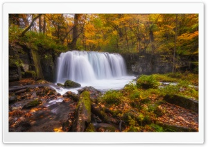 Forest Waterfall Autumn HD Wide Wallpaper for Widescreen