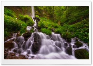 Forest Waterfall, Summer HD Wide Wallpaper for Widescreen