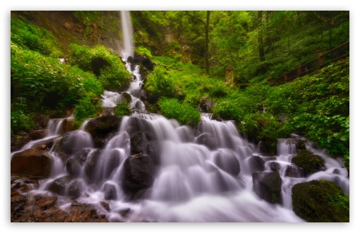 Forest Waterfall, Summer HD wallpaper for Wide 16:10 5:3 Widescreen WHXGA WQXGA WUXGA WXGA WGA ; HD 16:9 High Definition WQHD QWXGA 1080p 900p 720p QHD nHD ; UHD 16:9 WQHD QWXGA 1080p 900p 720p QHD nHD ; Standard 4:3 5:4 3:2 Fullscreen UXGA XGA SVGA QSXGA SXGA DVGA HVGA HQVGA devices ( Apple PowerBook G4 iPhone 4 3G 3GS iPod Touch ) ; Smartphone 5:3 WGA ; Tablet 1:1 ; iPad 1/2/Mini ; Mobile 4:3 5:3 3:2 16:9 5:4 - UXGA XGA SVGA WGA DVGA HVGA HQVGA devices ( Apple PowerBook G4 iPhone 4 3G 3GS iPod Touch ) WQHD QWXGA 1080p 900p 720p QHD nHD QSXGA SXGA ; Dual 16:10 5:3 16:9 4:3 5:4 WHXGA WQXGA WUXGA WXGA WGA WQHD QWXGA 1080p 900p 720p QHD nHD UXGA XGA SVGA QSXGA SXGA ;