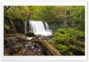 Forest Waterfalls, HDR HD Wide Wallpaper for Widescreen