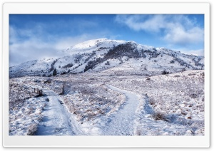 Fork In The Road Winter Landscape HD Wide Wallpaper for Widescreen