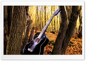 Forrest Guitar HD Wide Wallpaper for 4K UHD Widescreen desktop & smartphone