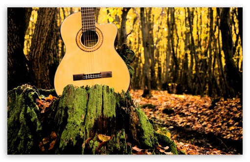 Forrest Guitar HD wallpaper for Wide 16:10 5:3 Widescreen WHXGA WQXGA WUXGA WXGA WGA ; HD 16:9 High Definition WQHD QWXGA 1080p 900p 720p QHD nHD ; UHD 16:9 WQHD QWXGA 1080p 900p 720p QHD nHD ; Standard 4:3 5:4 3:2 Fullscreen UXGA XGA SVGA QSXGA SXGA DVGA HVGA HQVGA devices ( Apple PowerBook G4 iPhone 4 3G 3GS iPod Touch ) ; Tablet 1:1 ; iPad 1/2/Mini ; Mobile 4:3 5:3 3:2 16:9 5:4 - UXGA XGA SVGA WGA DVGA HVGA HQVGA devices ( Apple PowerBook G4 iPhone 4 3G 3GS iPod Touch ) WQHD QWXGA 1080p 900p 720p QHD nHD QSXGA SXGA ; Dual 5:4 QSXGA SXGA ;