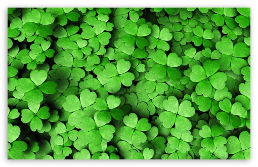 Four-leaf Clover ❤ 4K UHD Wallpaper for Wide 16:10 5:3 Widescreen WHXGA WQXGA WUXGA WXGA WGA ; UltraWide 21:9 24:10 ; 4K UHD 16:9 Ultra High Definition 2160p 1440p 1080p 900p 720p ; UHD 16:9 2160p 1440p 1080p 900p 720p ; Standard 4:3 5:4 3:2 Fullscreen UXGA XGA SVGA QSXGA SXGA DVGA HVGA HQVGA ( Apple PowerBook G4 iPhone 4 3G 3GS iPod Touch ) ; Smartphone 16:9 3:2 5:3 2160p 1440p 1080p 900p 720p DVGA HVGA HQVGA ( Apple PowerBook G4 iPhone 4 3G 3GS iPod Touch ) WGA ; Tablet 1:1 ; iPad 1/2/Mini ; Mobile 4:3 5:3 3:2 16:9 5:4 - UXGA XGA SVGA WGA DVGA HVGA HQVGA ( Apple PowerBook G4 iPhone 4 3G 3GS iPod Touch ) 2160p 1440p 1080p 900p 720p QSXGA SXGA ; Dual 16:10 5:3 16:9 4:3 5:4 3:2 WHXGA WQXGA WUXGA WXGA WGA 2160p 1440p 1080p 900p 720p UXGA XGA SVGA QSXGA SXGA DVGA HVGA HQVGA ( Apple PowerBook G4 iPhone 4 3G 3GS iPod Touch ) ; Triple 16:10 5:3 16:9 4:3 5:4 3:2 WHXGA WQXGA WUXGA WXGA WGA 2160p 1440p 1080p 900p 720p UXGA XGA SVGA QSXGA SXGA DVGA HVGA HQVGA ( Apple PowerBook G4 iPhone 4 3G 3GS iPod Touch ) ;