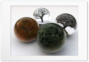 Four Seasons - Trees In Glass Balls HD Wide Wallpaper for Widescreen