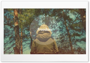 Freedom HD Wide Wallpaper for Widescreen