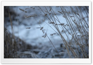 Freezing... HD Wide Wallpaper for Widescreen
