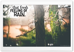 Fresh Feelings HD Wide Wallpaper for Widescreen