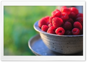 Fresh Raspberries HD Wide Wallpaper for Widescreen