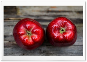 Fresh Red Apple HD Wide Wallpaper for Widescreen