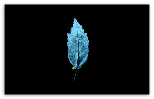 Fringe TV Series   A Leaf With An Embedded Isosceles Triangle HD wallpaper for Wide 16:10 5:3 Widescreen WHXGA WQXGA WUXGA WXGA WGA ; HD 16:9 High Definition WQHD QWXGA 1080p 900p 720p QHD nHD ; Standard 4:3 5:4 3:2 Fullscreen UXGA XGA SVGA QSXGA SXGA DVGA HVGA HQVGA devices ( Apple PowerBook G4 iPhone 4 3G 3GS iPod Touch ) ; Tablet 1:1 ; iPad 1/2/Mini ; Mobile 4:3 5:3 3:2 16:9 5:4 - UXGA XGA SVGA WGA DVGA HVGA HQVGA devices ( Apple PowerBook G4 iPhone 4 3G 3GS iPod Touch ) WQHD QWXGA 1080p 900p 720p QHD nHD QSXGA SXGA ;