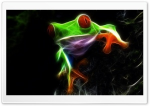 Frog HD Wide Wallpaper for Widescreen