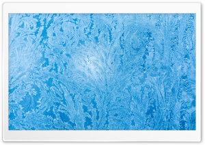Frozen Ice Flowers on Window Glass Ultra HD Wallpaper for 4K UHD Widescreen desktop, tablet & smartphone
