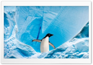 Frozen Landscape HD Wide Wallpaper for Widescreen