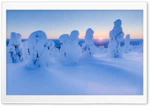Frozen Nature Ultra HD Wallpaper for 4K UHD Widescreen desktop, tablet & smartphone
