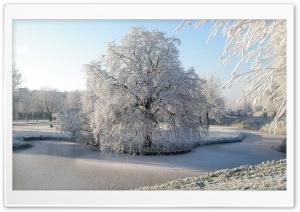 Frozen Park Ultra HD Wallpaper for 4K UHD Widescreen desktop, tablet & smartphone