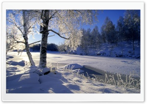 Frozen River, Winter HD Wide Wallpaper for Widescreen