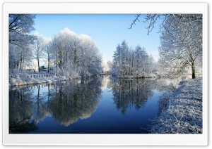 Frozen Trees Reflected In Water HD Wide Wallpaper for Widescreen