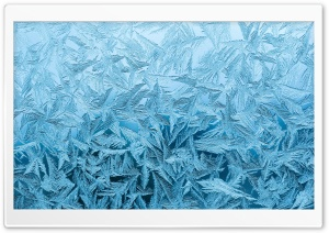 Frozen Window HD Wide Wallpaper for Widescreen