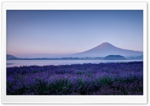 Fuji HD Wide Wallpaper for Widescreen